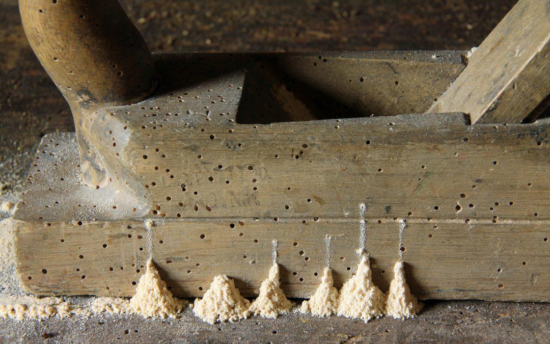 Prevenzione e monitoraggio dei tarli nei mobili antichi